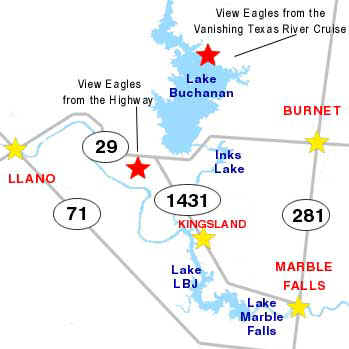 Visit the Highland Lakes of Texas to see American Bald Eagles